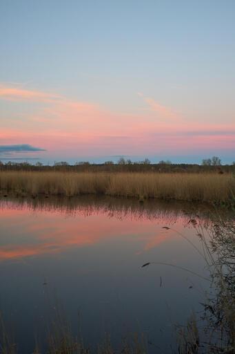 Sonnenuntergang (Flektogon)